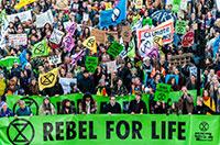 Activistas do Extinction Rebellion estão a ser pagos para protestar