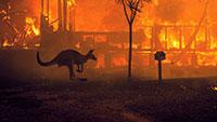 Austrália: 24 presos por fogo posto