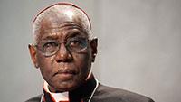 Papa remove cardeal negro que alertava para a morte da civilização ocidental