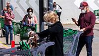 Estudo mostra que recolher obrigatório ajudou a espalhar o vírus