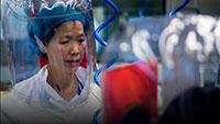 Cientistas garantem que genoma do coronavírus prova ter sido feito em laboratório